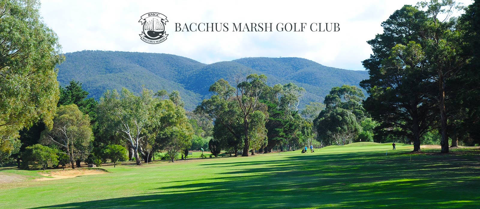 bacchus marsh latin singles A mix of single and double storey dwellings exist and have often been designed to enhance views across bacchus marsh fencing ranges from non-existent to post  housing bacchus marsh to 2041 and the moorabool planning scheme how the neighbourhood character statements will be used.
