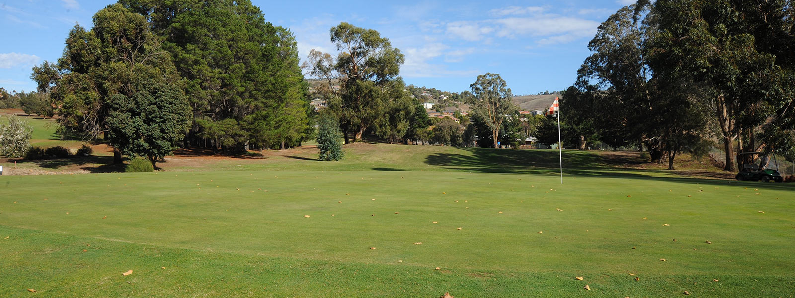 Hole 14 - Green Back View